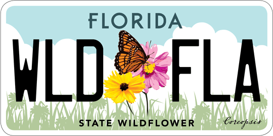 State wildflower license plate